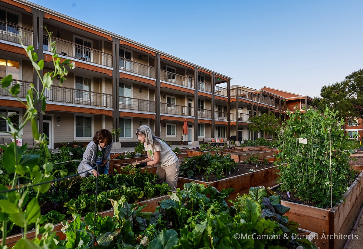 Cohousing Community Garden
